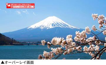 kawaguchiko_2.jpg